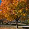 Autumn in Wisconsin